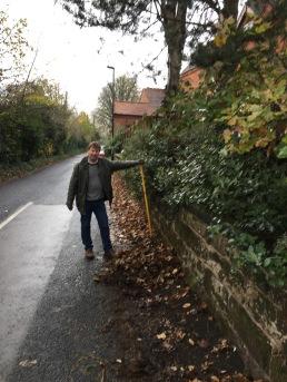 Windermere Road leaf clearing
